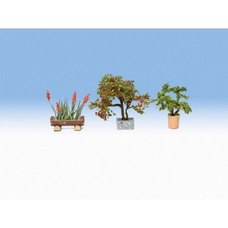 NOCH 14020 - Zierpflanzen in Blumenkübeln