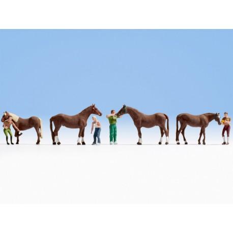 NOCH 15632 - Pferdepflege