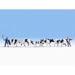 NOCH 15724 - Kühe treiben