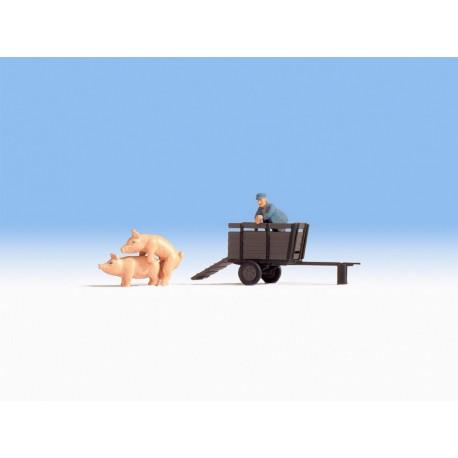 NOCH 16656 - Schweinetransport