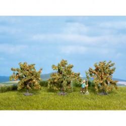 NOCH 25114 - Orangenbäume, 3 Stück, 4 cm hoch