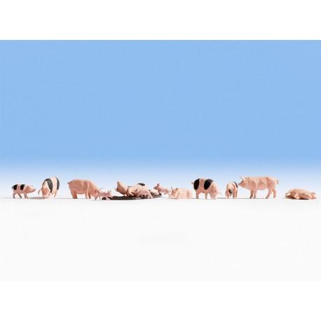 NOCH 36712 - Schweine
