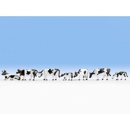 NOCH 36721 - Kühe, schwarz-weiß