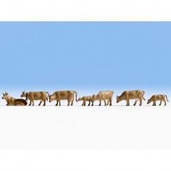NOCH 36722 - Kühe, dunkelbraun
