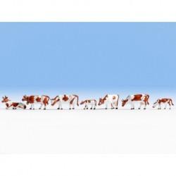 NOCH 36723 - Kühe, braun-weiß