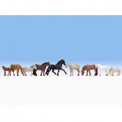 NOCH 36761 - Pferde