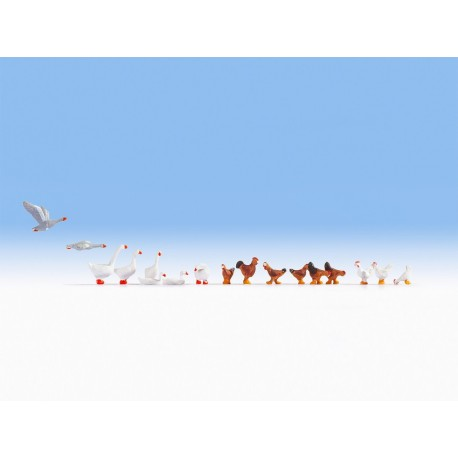 NOCH 15772 - Hühner und Gänse