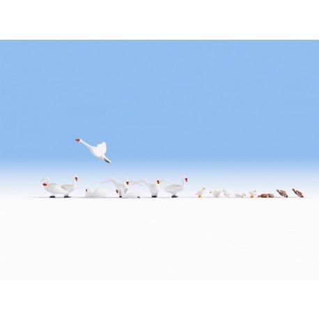 NOCH 15774 - Schwäne und Enten