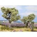 NOCH 21995 - Olivenbäume